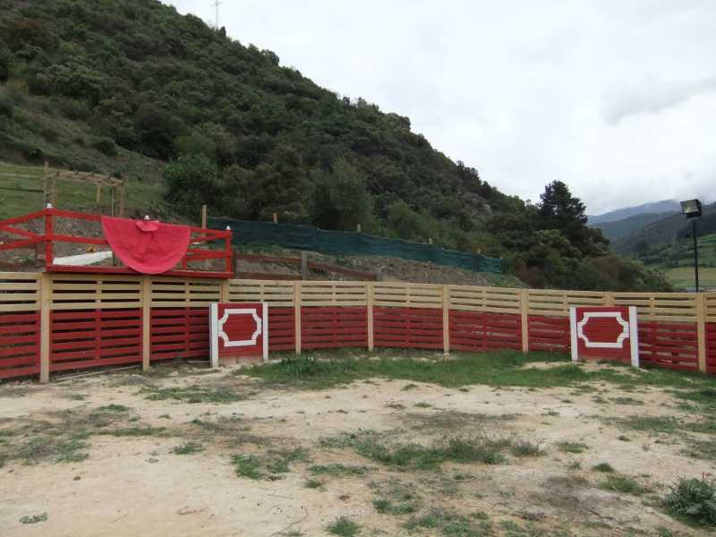 Juegos De Baño Capea: de carretillos, carrera de burgos, lanzamiento de alpaca, tiro con